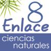 Vector Z | Enlace Ciencias Naturales 8