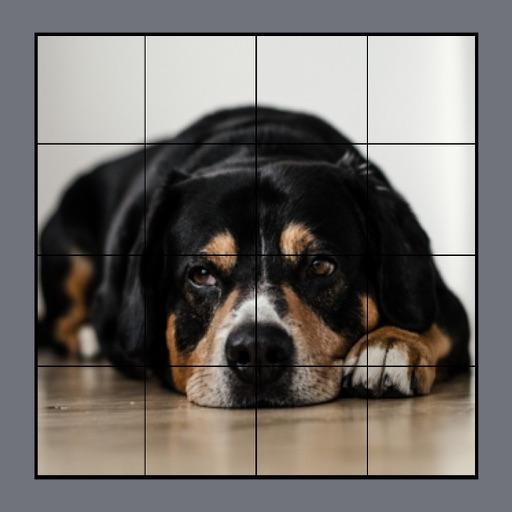 Dog Puzzles Extreme! 3 Icon