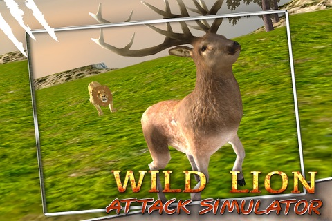 Wild Lion Attack Simulator 3D screenshot 2
