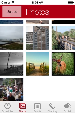 Fire Island App screenshot 4
