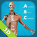 Anatomy Quiz - muscles and bones