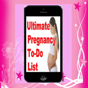 Pregnancy Checklist.Pregnancy To-Do List. icon