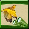 World Bird Calculator