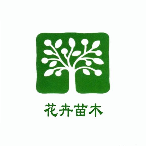 绿色树苗矢量图