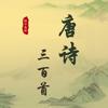 唐诗三百首完整典藏HD-国学经典-名师诵读-注释+翻译