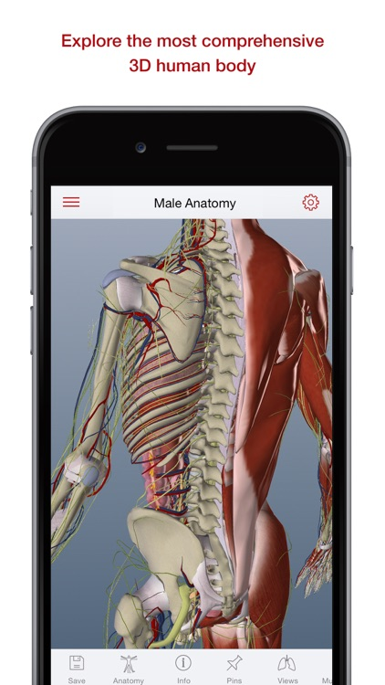 BioDigital Human: 3D Anatomy Explorer by BioDigital, Inc.