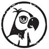 爱鹦鹉论坛