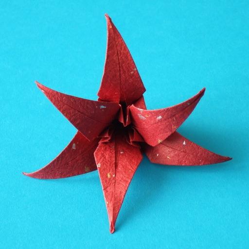 花朵折纸:Origami Flowers