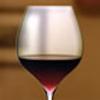 ワイン手帳HD-Wine Encyclopedia For Gourmet-