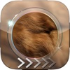 BlurLock – Animal Skins : Blur Lock Screen Photo Maker Wallpapers For Pro