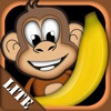 Monkey & Bananas