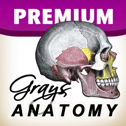 Gray's Anatomy Premium Edition