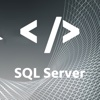 Easy To Use SQL Sever - Learn SQL Sever Video Training odbc sql