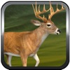 A Duck Life and Deer Beard Swamp Hunter 2014 - First Person Slingshot Shooter Dynasty Free