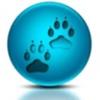 SNAPi App