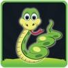Dragon Snake Retro Classic Pro