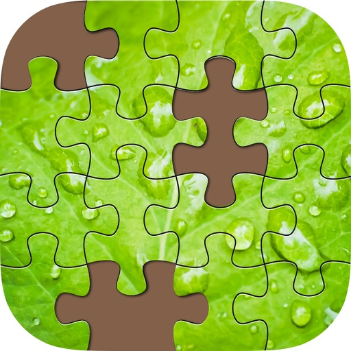 Activity Puzzle Nature Plus Landscapes -daily educational  jigsaw puzzles iOS App