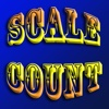 Scale Counter