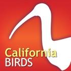 Audubon Bird Guide: California – A Field Guide to the Birds of California icon