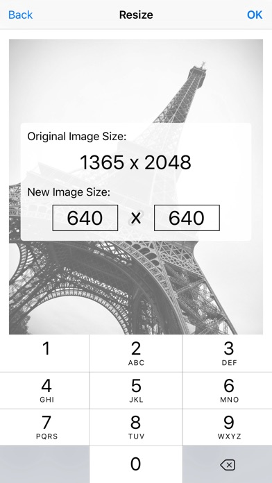 Image Resizer Pro - I... screenshot1