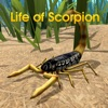 Life Of Scorpion