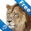 Animal sounds and pictures, hear jungle sound in Kids zoo, Petting zoo with real images and sound