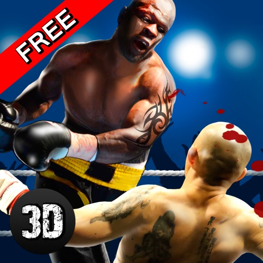 Real Punch Box Fighting 3D iOS App