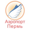 Bolshoye Savino Airport Flight Status