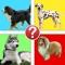 Dog Breeds Pic Quiz - Man's Best Friend