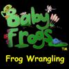 Richard Wittmann - Baby Frogs - Frog Wrangling  artwork