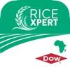 RiceXpert