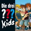 Die drei ??? Kids – Die geheimnisvolle Schatulle (drei Fragezeichen Kids)