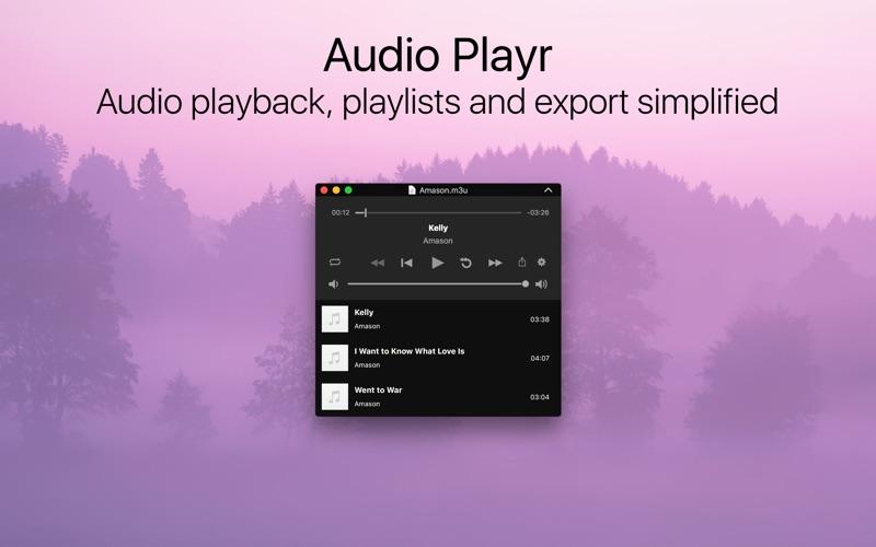 Audio Playr Screenshots