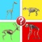 Animals by Skeleton Trivia - Guess the Creature