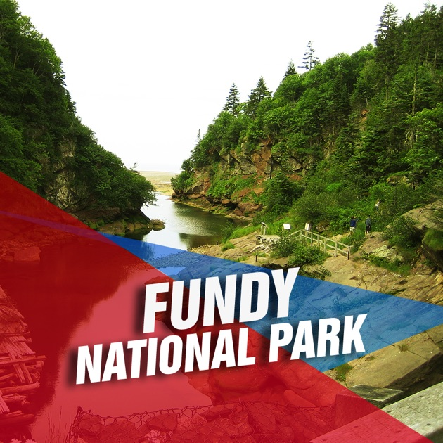 fundy national park essay example Fundy national park, alma, nb 9,442 likes 89 talking about this 3,380 were here parks canada's official facebook page for fundy national park.