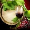 Cave dos vinhos