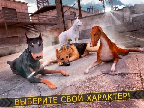 Скачать игру моя собака виртуальный . Бесплатно щенок милый гонка игра для детей