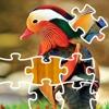 Puzzle Birds
