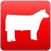 Stock Show Emojis