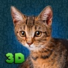 Naughty Cat Simulator 3D Full