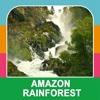 Amazon Rainforest amazon mobile