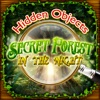Hidden Objects - Secret Forest in the Night