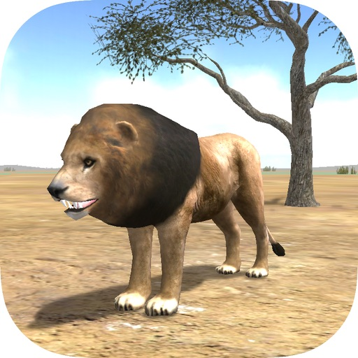 Wild Lion Adventures