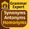 Grammar Expert: Synonyms, Antonyms and Homonyms