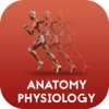 Anatomy & Physiology by Video