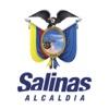 Ciudad de Salinas