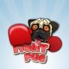Fight Pug
