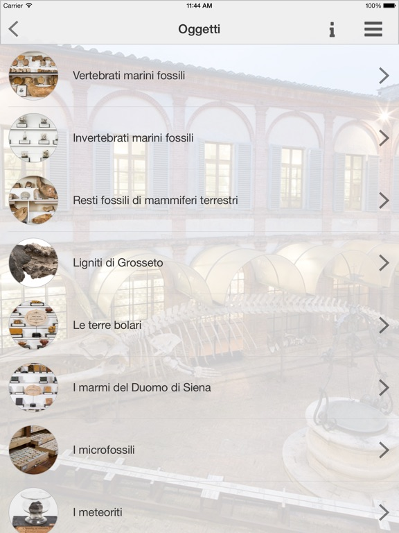 Museo in tasca Screenshot
