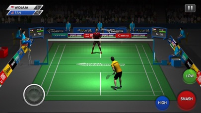 Real Badminton screenshot1