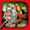 Hidden Object Animal Story